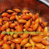 Buy Iboga Seeds